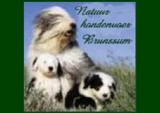 Natuurhondenvoer Brunssum